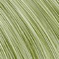 L3-18 Grass Green ( Mix )