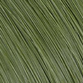L3-36  Grass Green